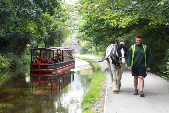 public horse drawn boat trip - 2 hours
